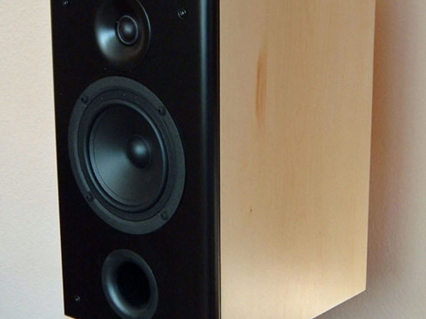 (The Clue) Monitor Speaker