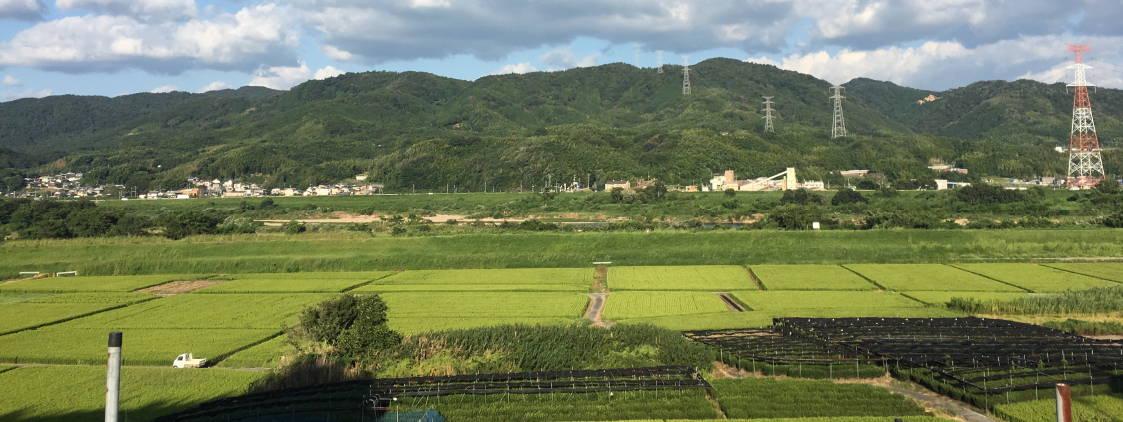出島園 京都