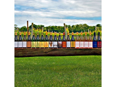 Channing Daughters Wine Tasting for 6 & Wine Gift Basket