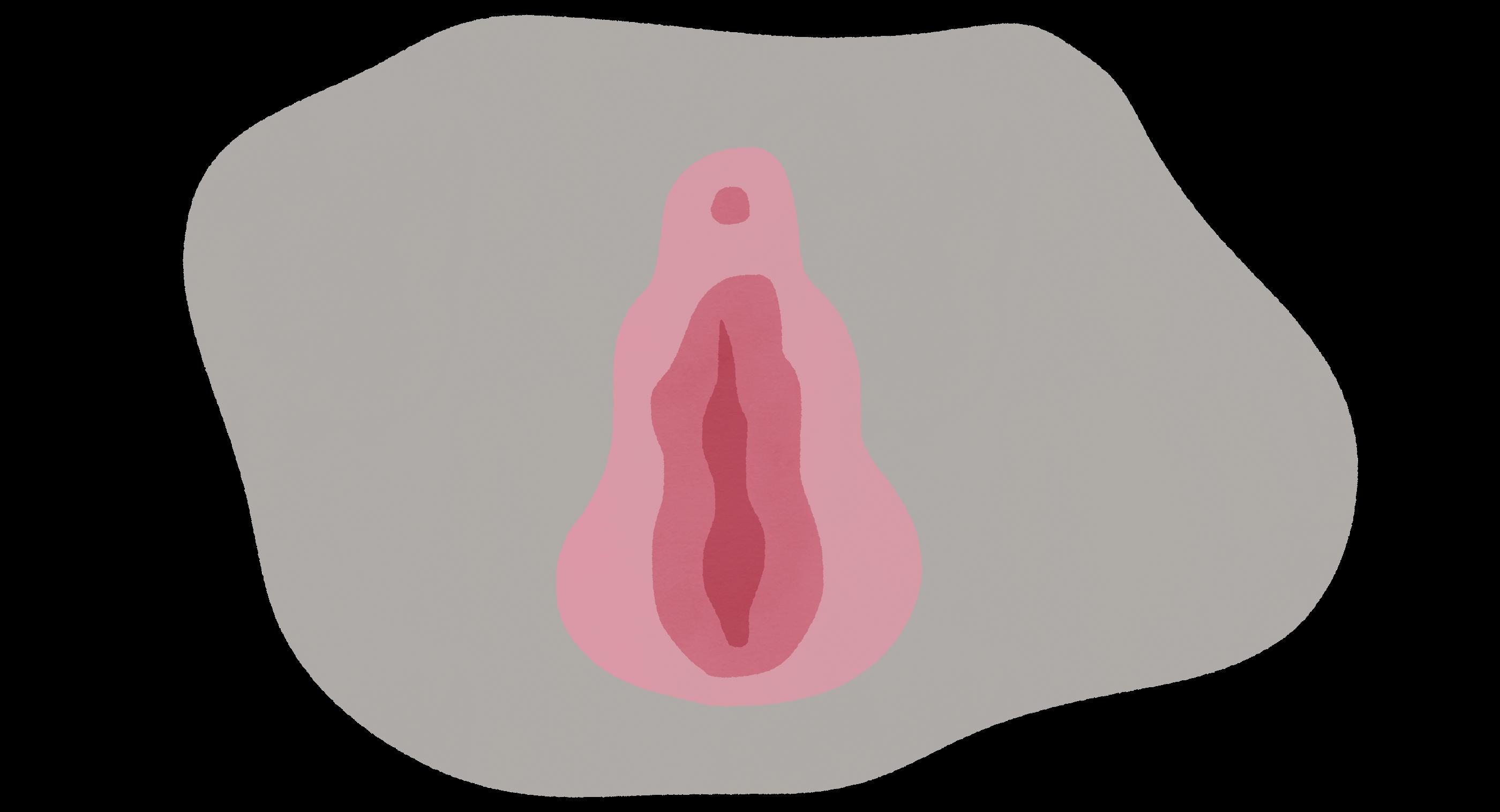 Die inneren und äußeren Schamlippen und die Klitoris bilden die Vulva: den äußeren Genitalbereich der Frau. Jede Vulva ist einzigartig. Tags: Klitoris, Orgasmus, Vagina, Stimulation, Sex