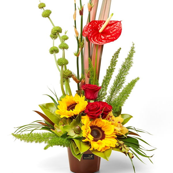 Phoenix_flowers_delivery_interflora_nz