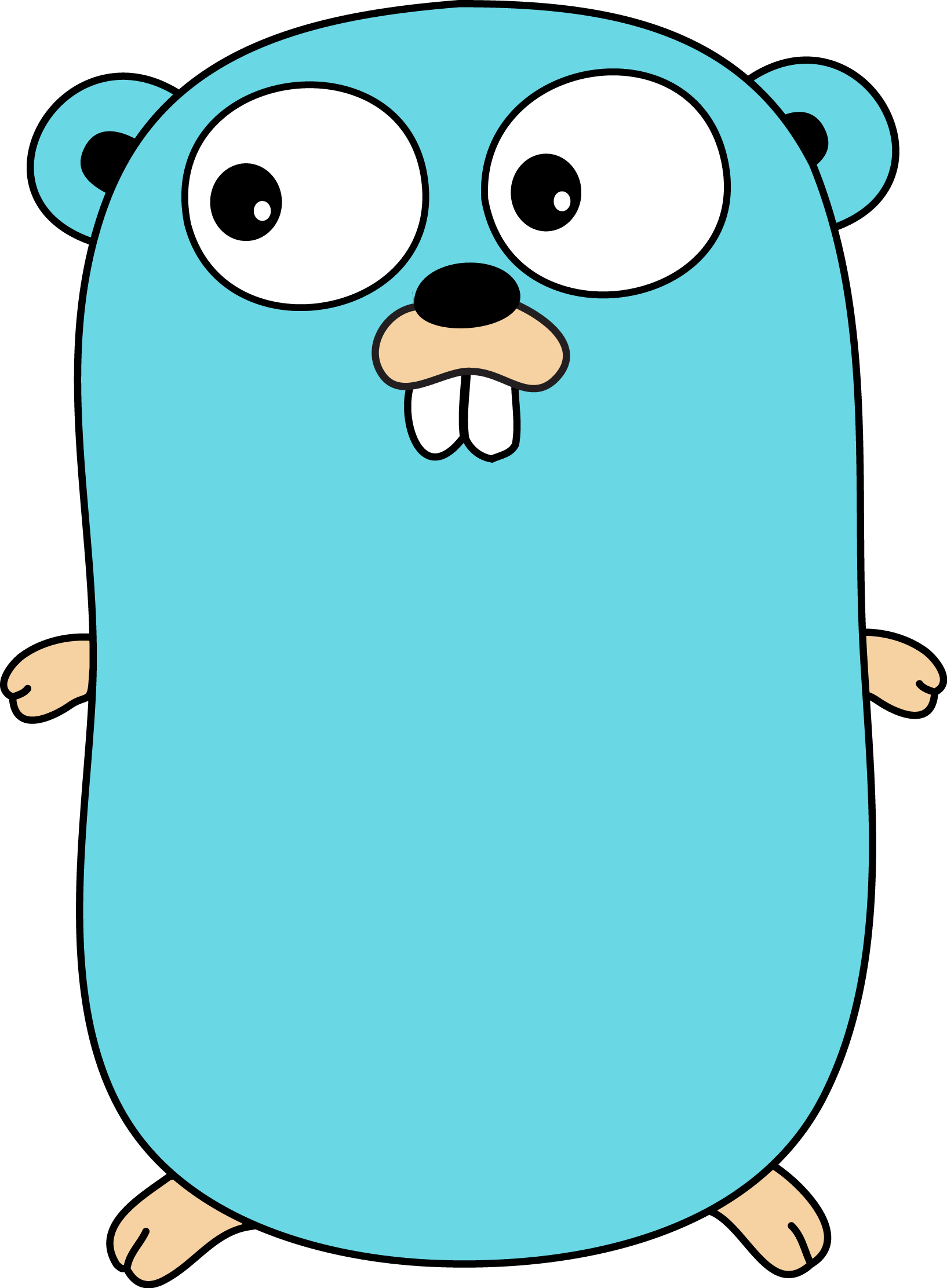 Golang - What are the best languages to learn for embedded