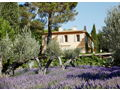 Soak up the Summer Sun in Aix-en-Provence