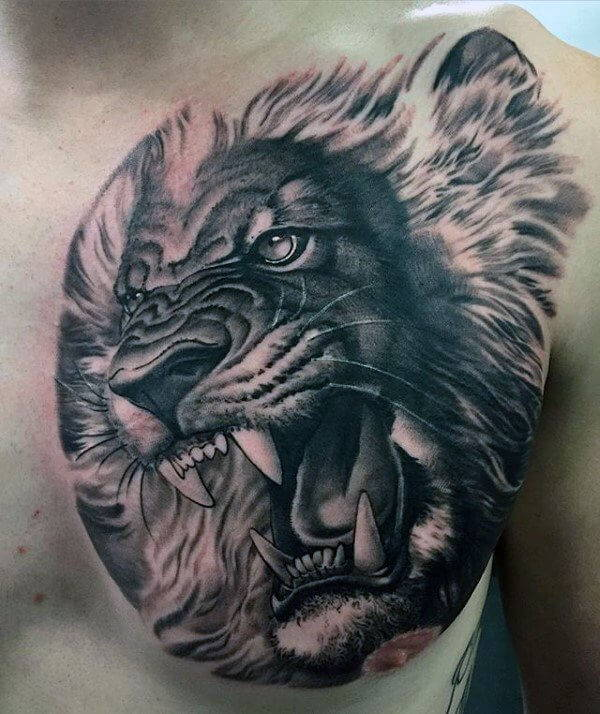 Tatouage Lion Rugissant Pectoraux