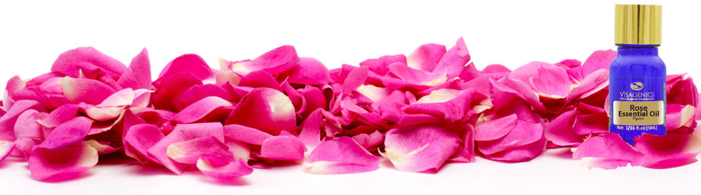 Pure Rose Oil. Bulgarian