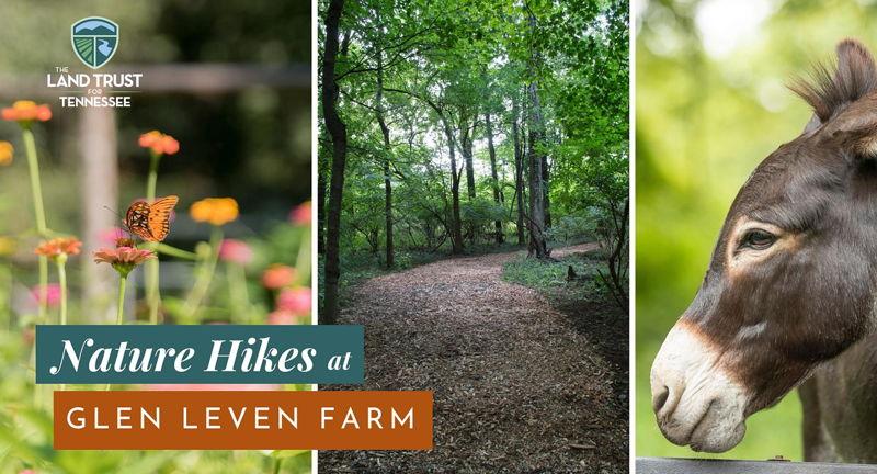 Nature Hikes at Glen Leven Farm