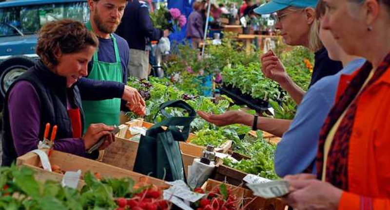 Dunwoody Farmers Market