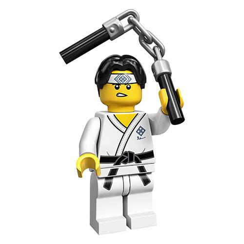 The Martial Arts Boy