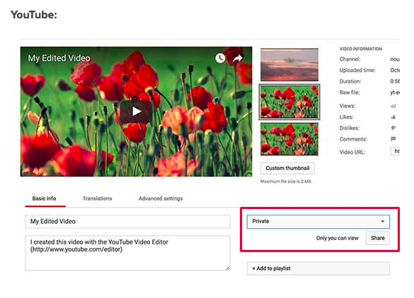 YouTube Privacy Controls