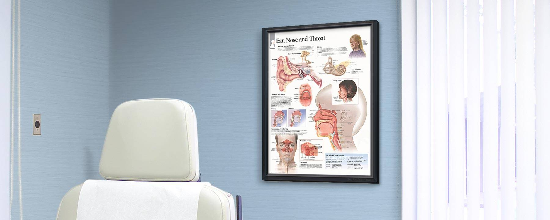Exam room with framed poster