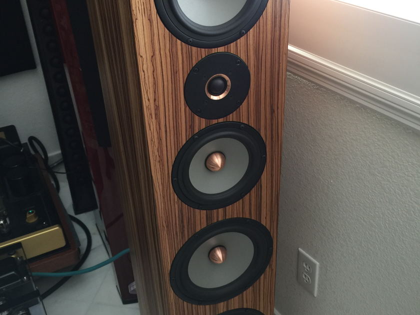 Tyler Acoustics Linbrook Reference Better than the signature Custom zebra wood curve base