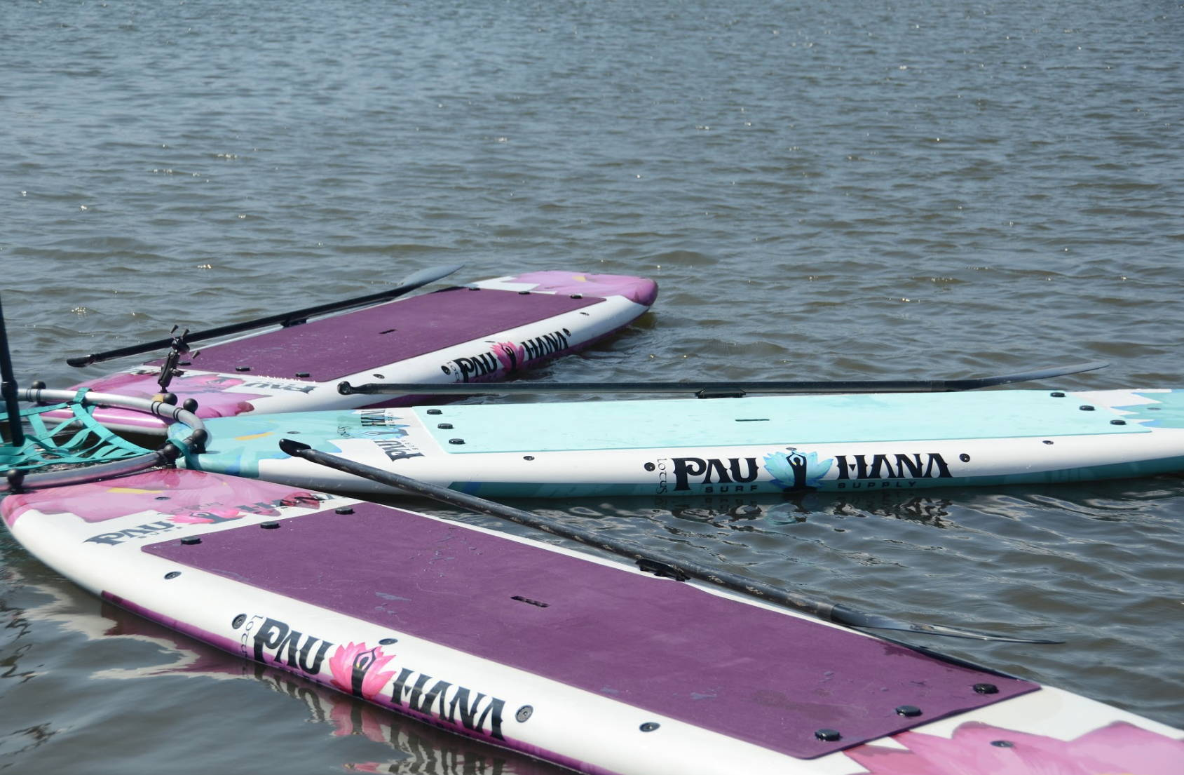 Pau Hana Lotus SUP Boards in Marina del Rey