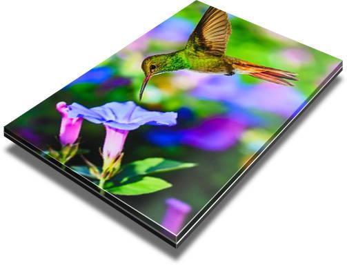 Matte finish acrylic print