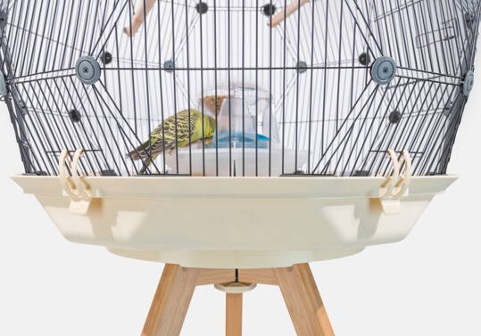 Geo Bird Cage Cream Base