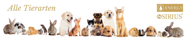 Naturheilmittel für alle Tierarten