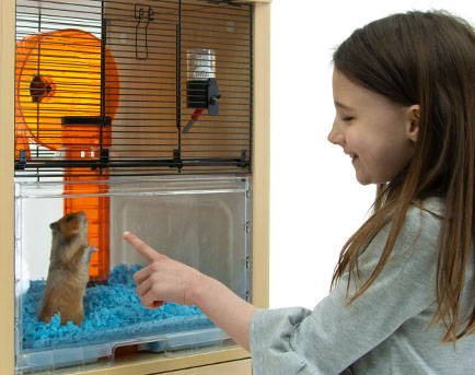 qute hamster cage with child playing