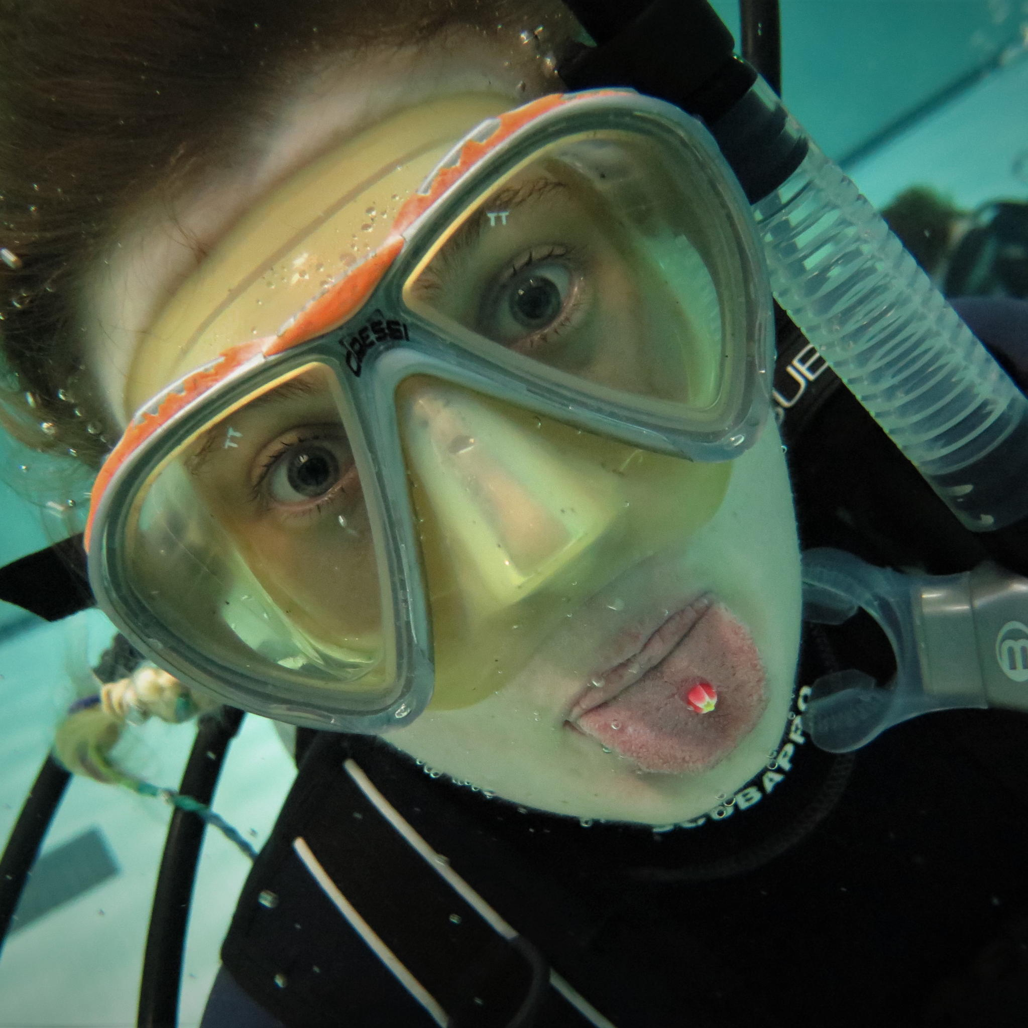 Rockfish Divers Open Water Course - Rockfish Divers