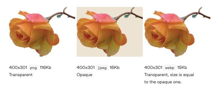 Image shrinking example