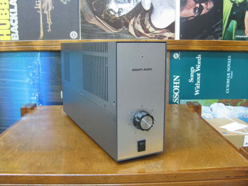 Dignity Audio 300B SE mono tube amplifier