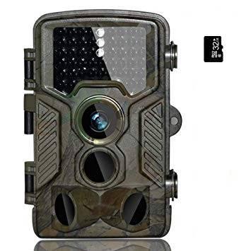 caméra nocturne animaux