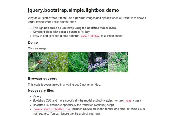 Simple-Lightbox.jpg