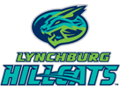 Lynchburg Hillcats Book of 10 General Admission Tickets