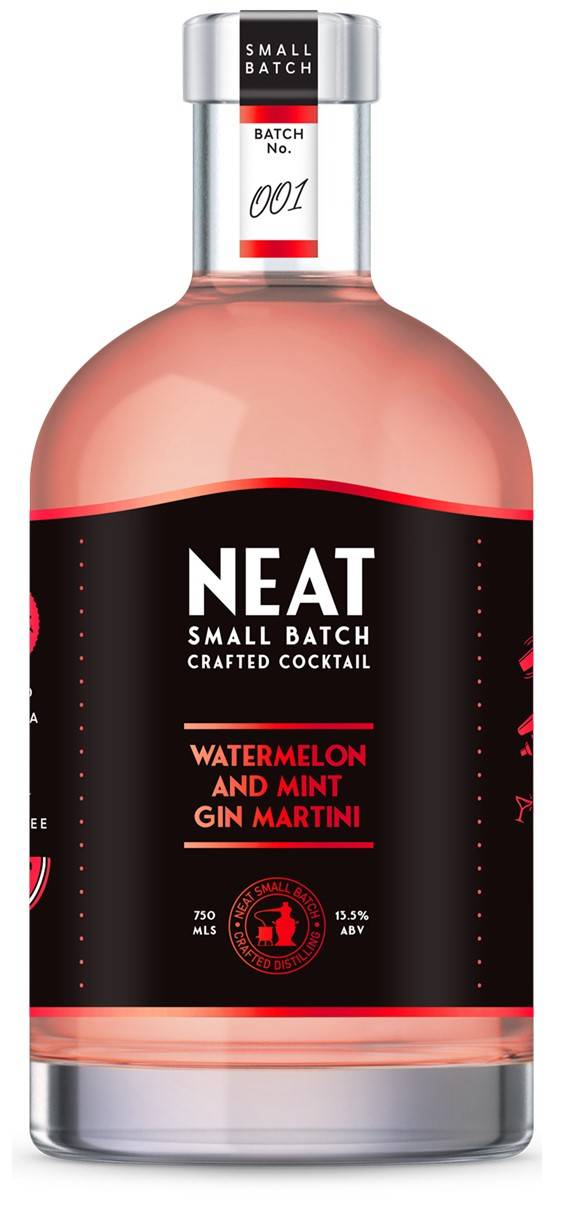 Neat Watermelon and Gin Martini