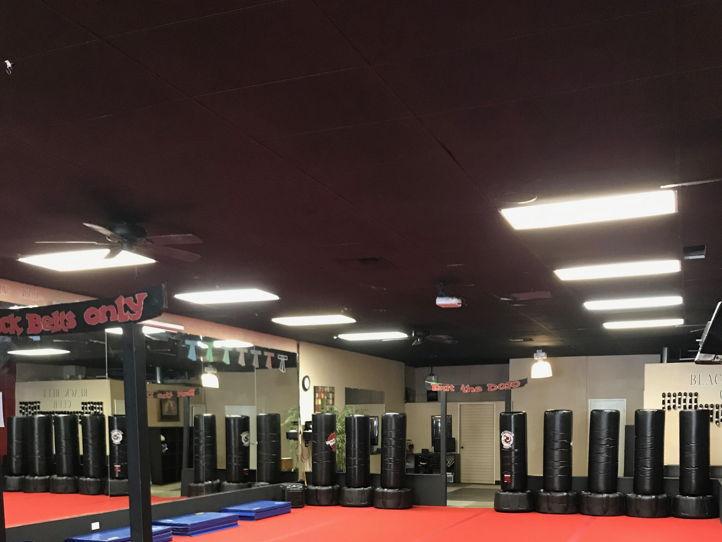 Martial Arts Dojo for Share