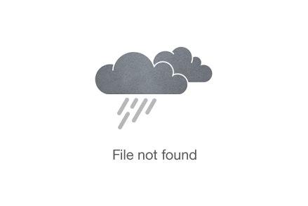Manuel-Félicité-Taekwondo-Sponsorise-me-image-2