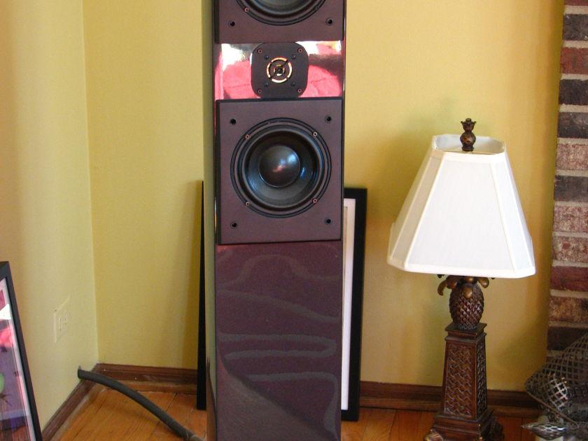 Acoustic Zen Adagio Floorstanding Piano Black and gorgeous!