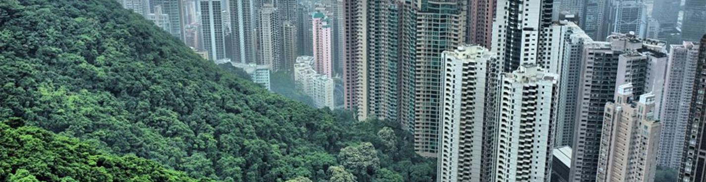 Индивидуальная обзорная экскурсия по Гонконгу