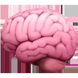 Brain 1f9e0