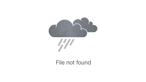 5 Gallery Layout With Ken Burns Hover Effect