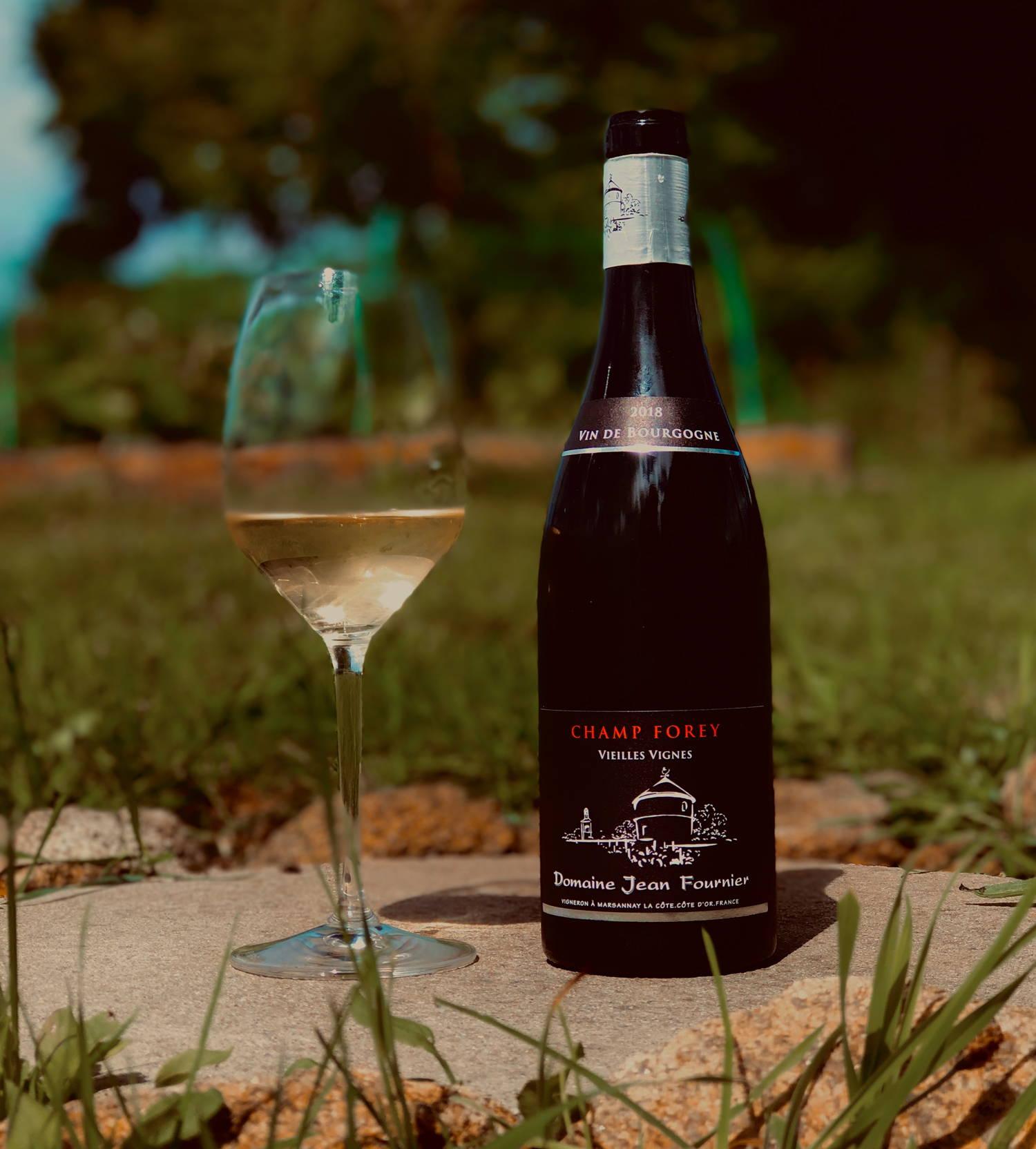 champ forey, aligoté, vieilles vignes, domaine jean fournier, bourgogne, marsannay, france, vin nature, rawwine, organic wine, vin bio, vin sans intrants, bistro brute, vin rouge, vin blanc, rouge, blanc, nature, vin propre, vigneron, vigneron indépendant, domaine bio, biodynamie, vigneron nature, cave vin naturel, cave vin, caviste, vin biodynamique, bistro brute