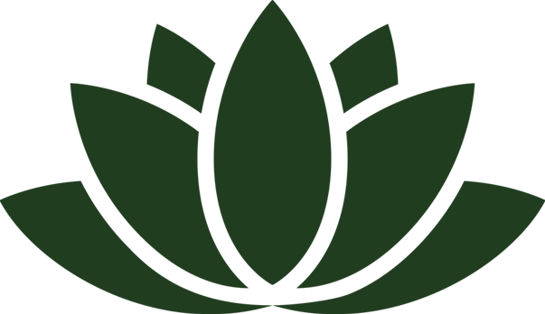 lotus flower skincare organic vegan cruelty free certified organic natural plant based highly concentrated reiki reiki infused reiki energy skin facial creams products cosmetics organic cosmetics