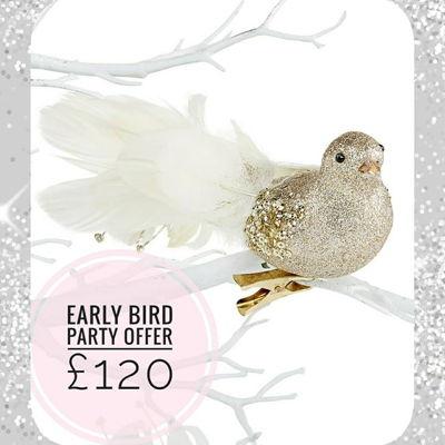 Early Bird Offer