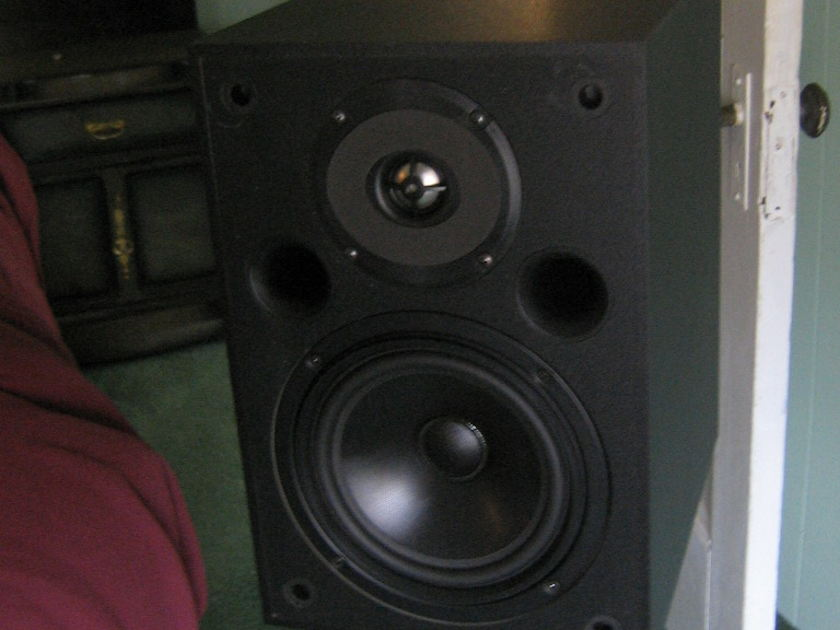 Platinum Audio PT-801 Monitor Speakers