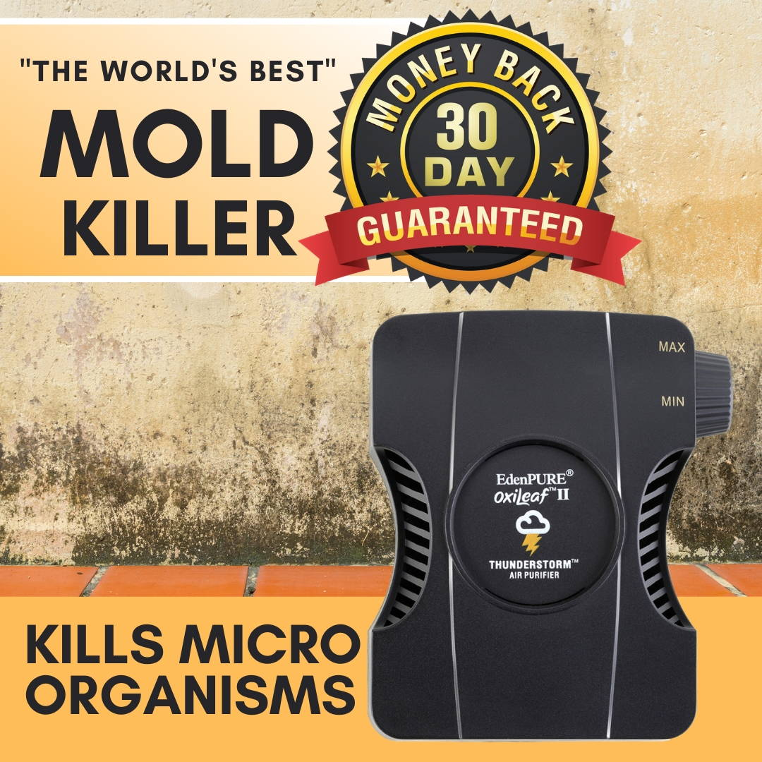 """""""The World's Best"""" Mold Killer - OxiLeaf™ Air Purifier for Mold, Mildew and Fungus"""
