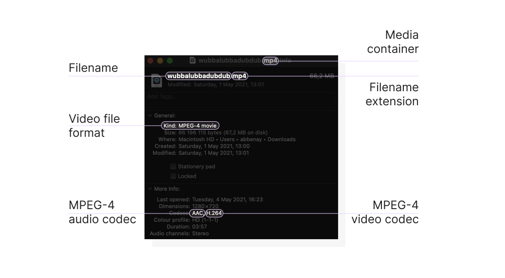 A video file's properties, including filename extension, size, and codecs