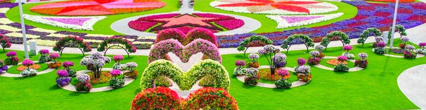Дивный сад Миракл Гарден