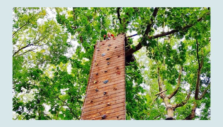 treetree die kletterwand