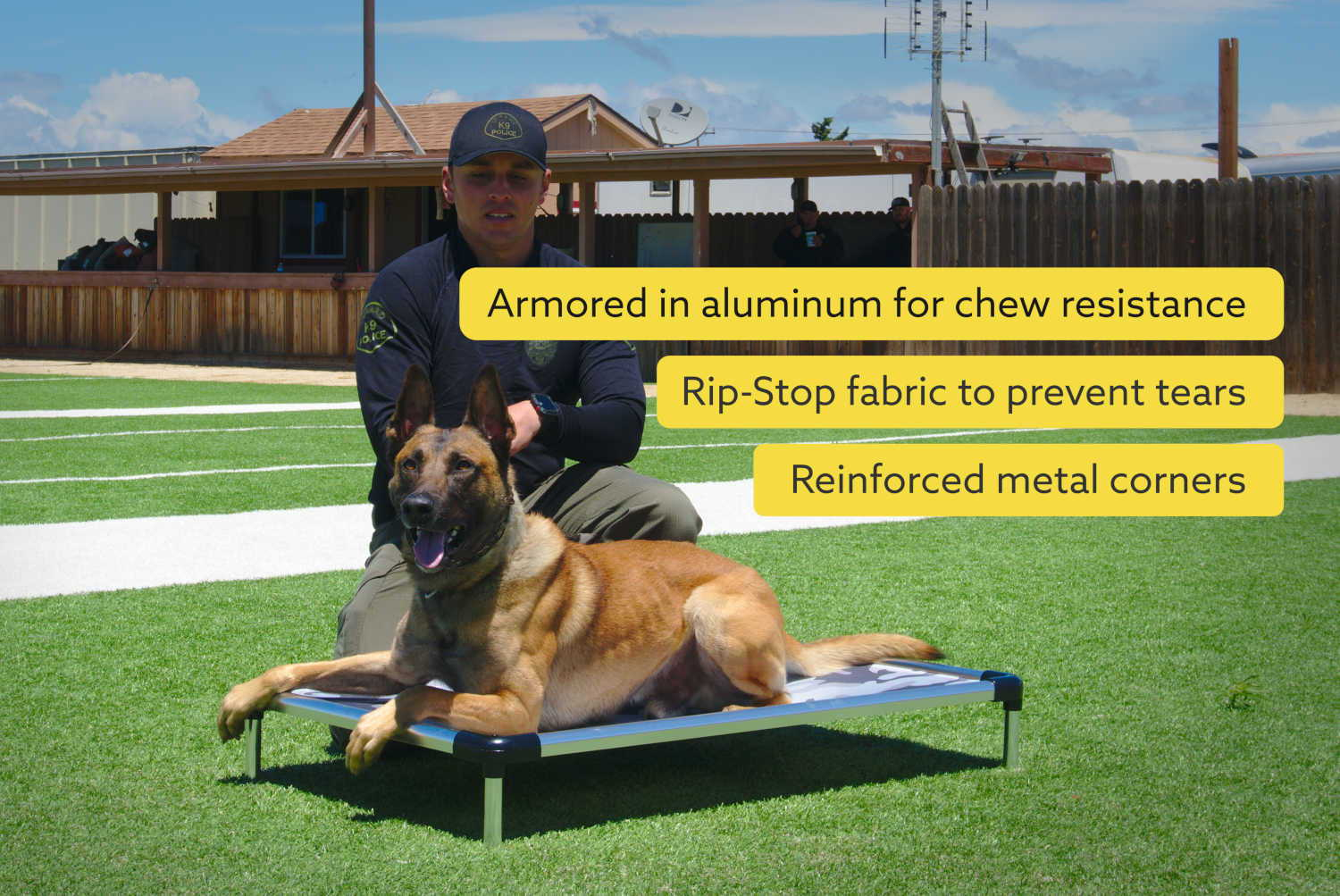 indestructible dog bed cot chew proof