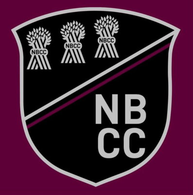 New Brighton Cricket Club Logo
