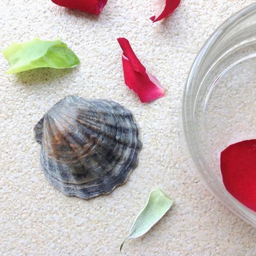 лосьон морской с розой и алоэ  FIGURA