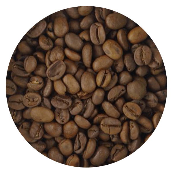 BeanBear Costa Rican coffee beans