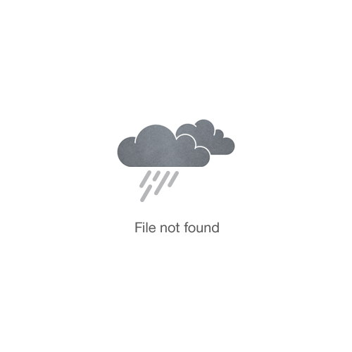 ZimZoom Photobooth