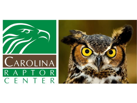 Private Tour for 10 - Carolina Raptor Center (Charlotte)