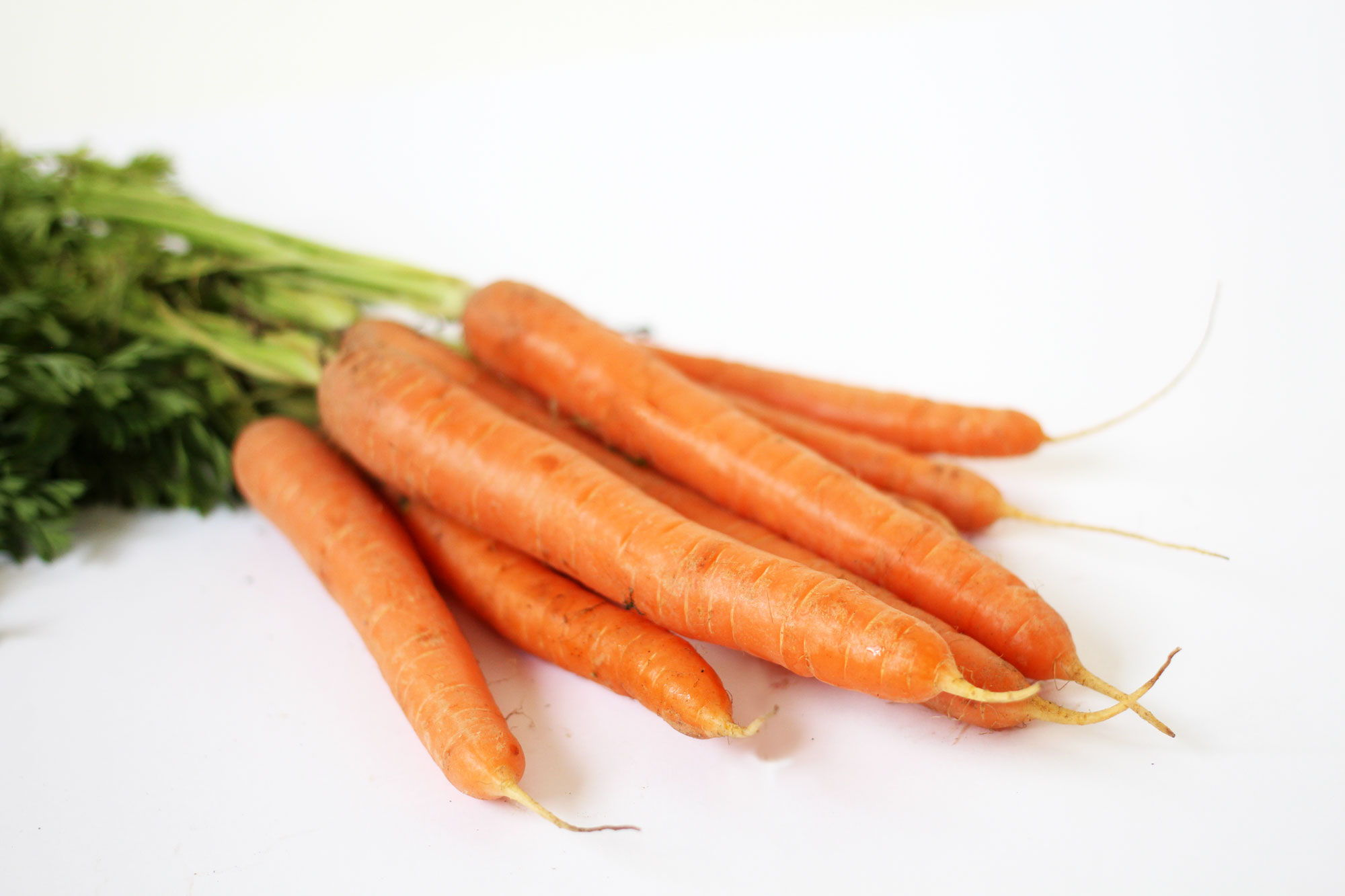 Carrots - Souto Farms Fresh BC Fruit