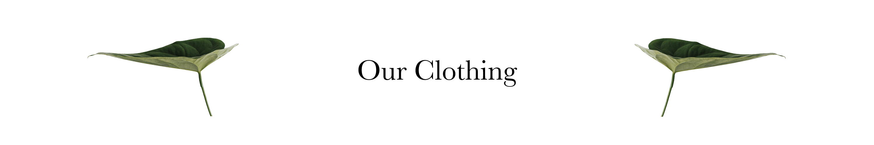 Our ethical and sustainable clothing for the modern woman