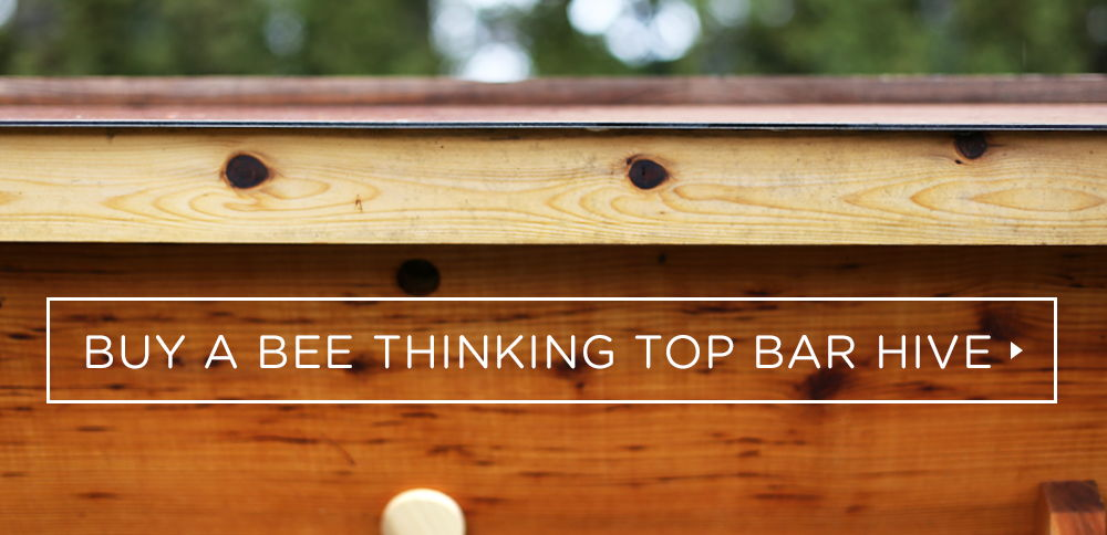 Buy a Bee Thinking top bar hive